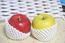 2color-apples.jpg