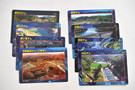 kashiwazaki-cards.jpg