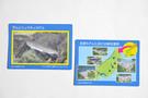 spl-cards.jpg
