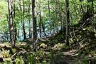 hike-road2.jpg