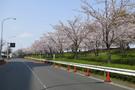 east-ohjima.jpg